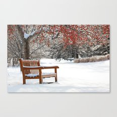 Winter Bench and Crabapple Tree Canvas Print