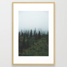 Moody Trees Framed Art Print
