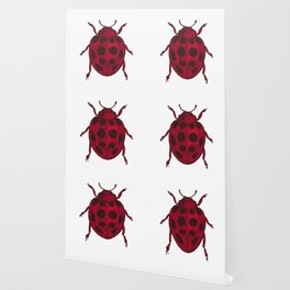 Red Lady Bug - white background Wallpaper