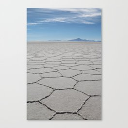 Salty Canvas Print