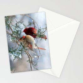 Shining on Her Own (Cardinal) Stationery Cards