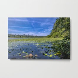 Forest lake in the city Metal Print