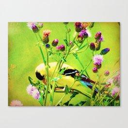 Goldfinch Yellow Bird Purple Flowers A101 Canvas Print