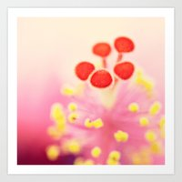 hibiscus Art Prints featuring Hibiscus by Laura Ruth
