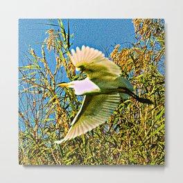 Neon Egret in Flight Metal Print