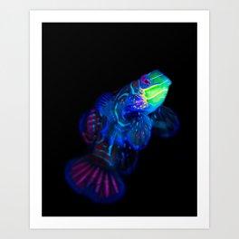 Mandarin Dragonet 001 Art Print