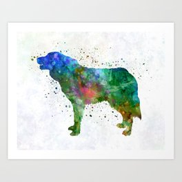 Bosnian and Herzegovinian Croatian Shepherd Dog in watercolor Art Print