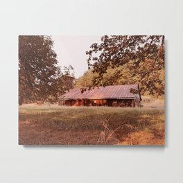 Hidden afternoon Metal Print