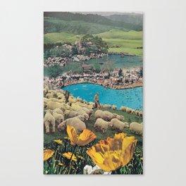 Sheep Farm Canvas Print