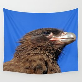 Striated Caracara Wall Tapestry