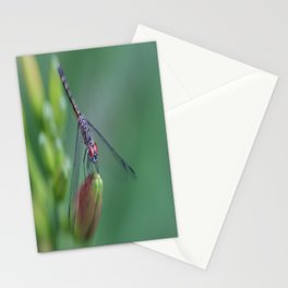 dragonflies are fairies in diguise Stationery Cards