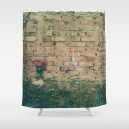 Lovers Be Damned Shower Curtain