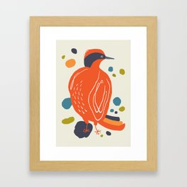 Quirky Helmeted Honeyeater Framed Art Print