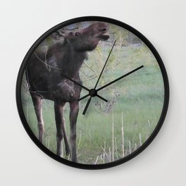 Missy willows evening Wall Clock