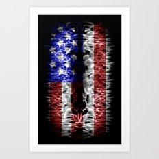 USA abstract  Art Print