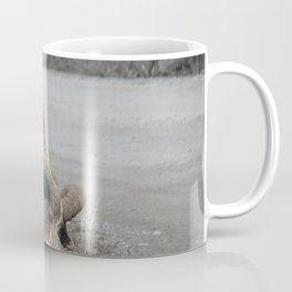 Forager Coffee Mug
