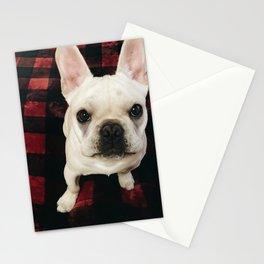Buffalo dog Stationery Cards