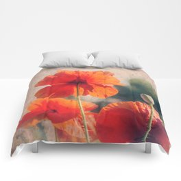 Red Poppies, Flowers Comforters