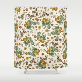 Apples Pears Peaches Shower Curtain