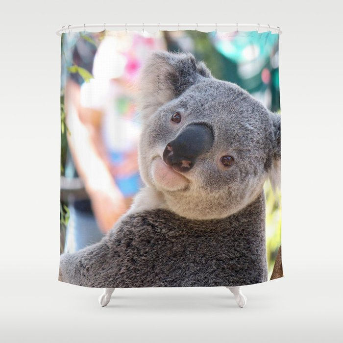 Extremely Gorgeous Little Grown Koala Bear Watching Camera Close Up Ultra High Resolution Shower Curtain
