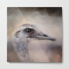 Poised - Ostrich - Wildlife  Metal Print