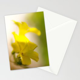 Bloomers Stationery Cards