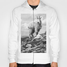 KING OF THE MOUNTAIN Hoody