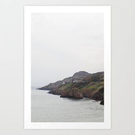 Ireland Coast Art Print