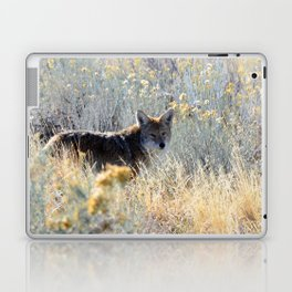 Stealthy Stare Laptop & iPad Skin
