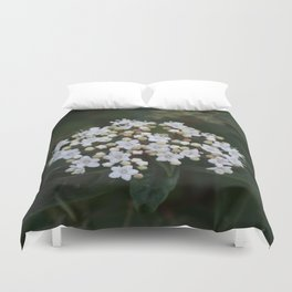 Viburnum tinus flowers and buds Duvet Cover