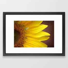 Textured Sunflower Petals Framed Art Print