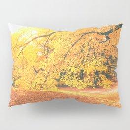 New York City Autumn Sun Pillow Sham
