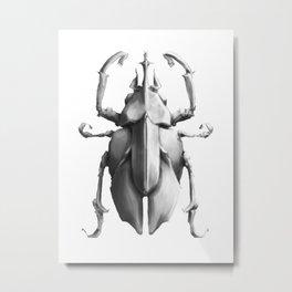 Bug Collection III Metal Print
