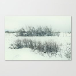cold field Canvas Print