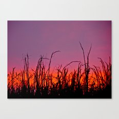 Sunset From a Dream Canvas Print