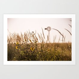 Sunflower Dreams & Windmill Memories... Art Print