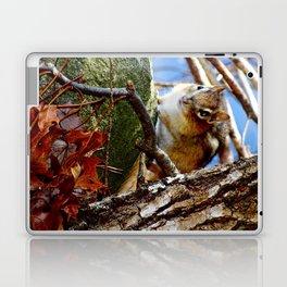 Chipmunk in the leaves Laptop & iPad Skin