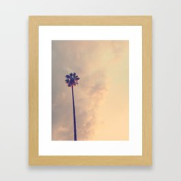 Los Angeles Palm Tree Pink Sky Framed Art Print