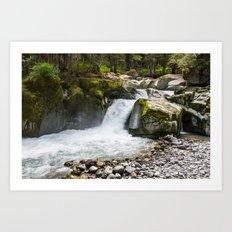 Waterfall at Mount Rainier National Park Art Print