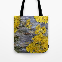 Tree Bark Pattern # 3 with yellow lichen Tote Bag