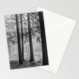 Black and white contrast forest - North Kessock, Highlands, Scotland Stationery Cards