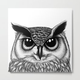 Owl sketch Metal Print