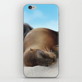 Sea lions family sleeping together on beach iPhone Skin