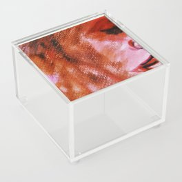Noise (abstract art) Acrylic Box