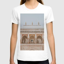 Amber Palace III / Jaipur, India T-shirt