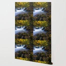virginia creeper creek junction during autumn Wallpaper