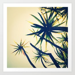Palms on Palms Art Print