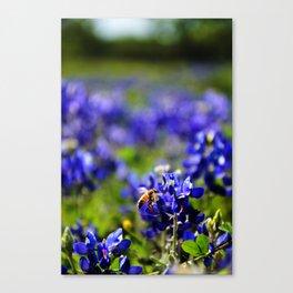 A Texas Weekend Canvas Print