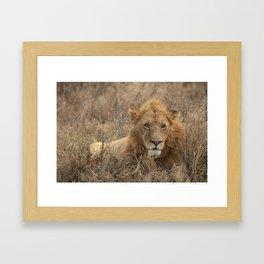 Big Poppa Framed Art Print