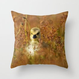 Baby Canada Goose Among The Wild Flowers Throw Pillow